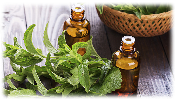 Peppermint Essential Oil for Pre-Workout